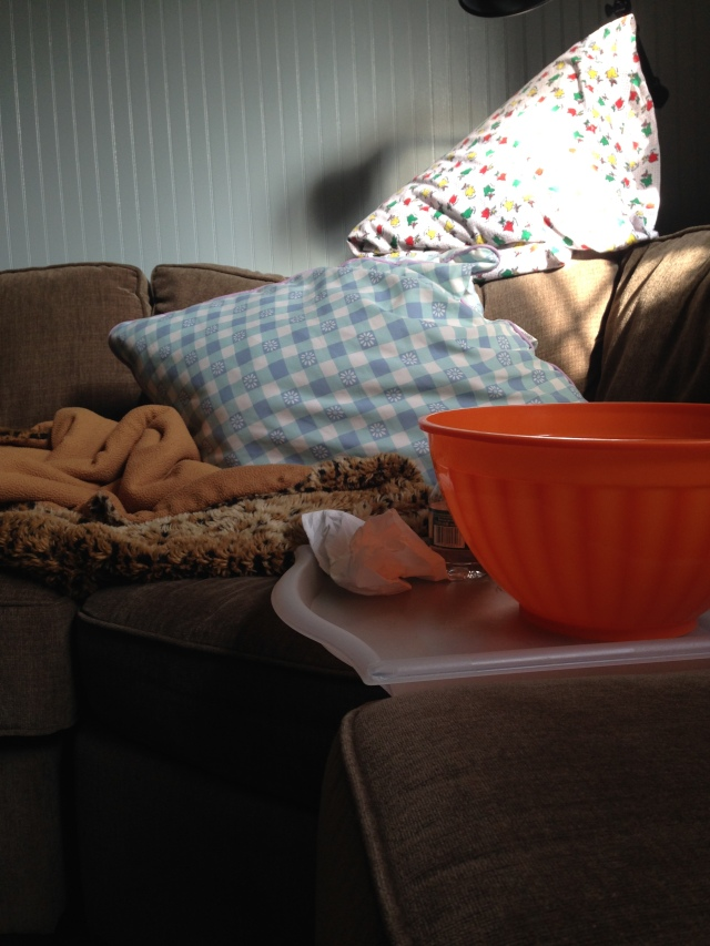 The Orange Vomit Bowl and the Infamous Couch